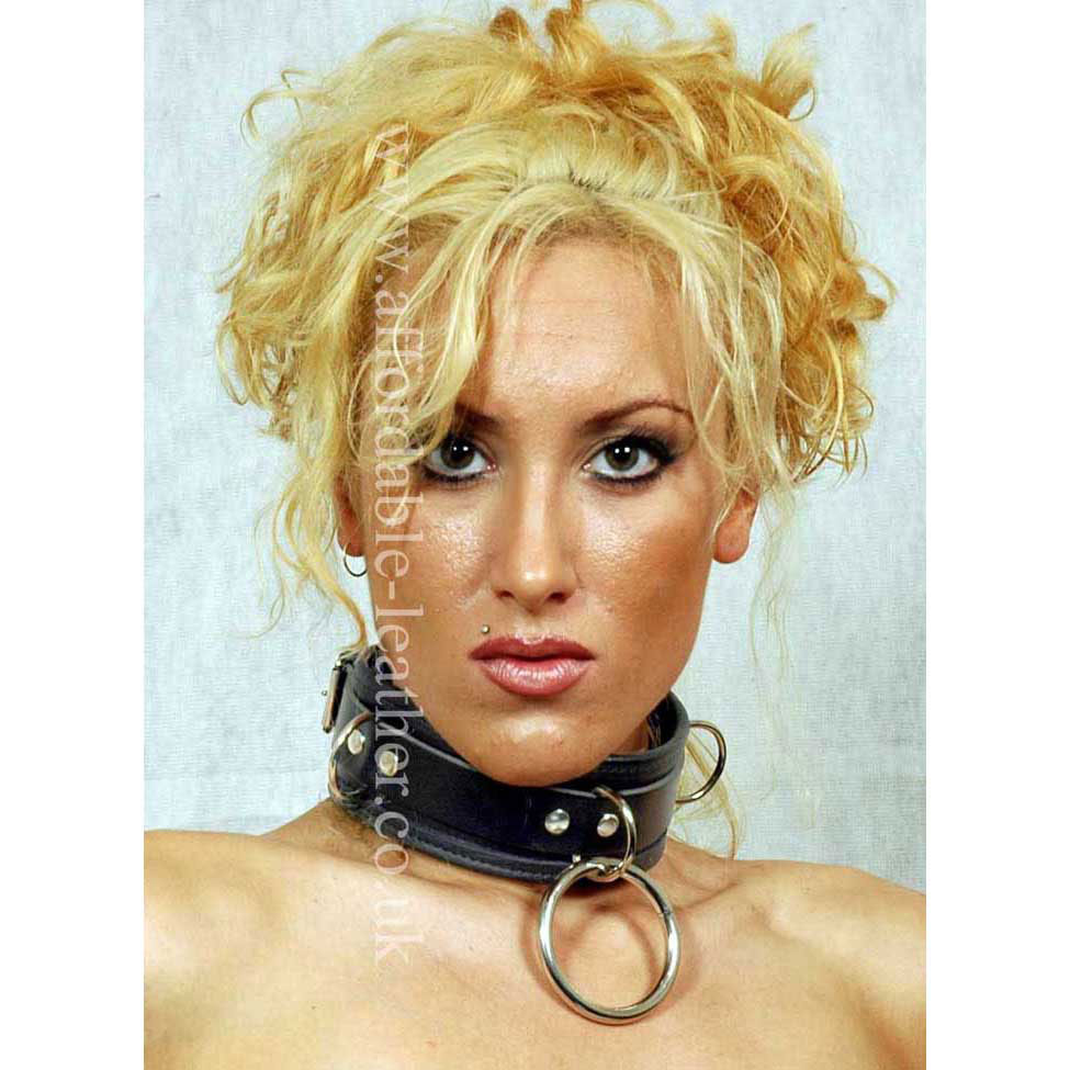 COL 22-23 - Leather Collar with 2 inch Ring and 3 D Rings